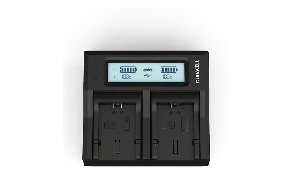 CGR-S006E Panasonic CGA-S006 Dual Battery Charger